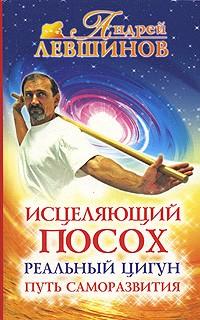 Андрей Левшинов — Исцеляющий посох. Реальный цигун
