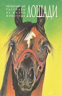 без автора — Необычайные рассказы из жизни животных. Лошади. Ослы