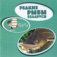 без автора - Редкие рыбы Беларуси