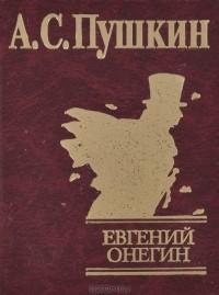 сочинение природа конфликта в романе пушкина евгений онегин