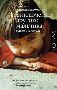 Елизавета Заварзина-Мэмми - Приключения другого мальчика. Аутизм и не только
