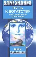 Валерий Синельников - Путь к богатству, или Где зарыты сокровища