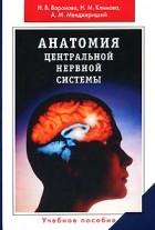 - Анатомия центральной нервной системы
