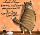 Алекс Экслер - Записки невесты программиста. Записки кота Шашлыка (сборник)