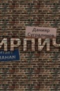 Данияр Сугралинов - Кирпичи