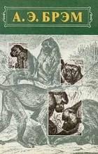 А. Э. Брэм - А. Э. Брэм. Жизнь животных. В трех томах. Том 1. Млекопитающие