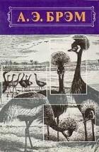 Альфред Эдмунд Брем - Жизнь животных. В трех томах. Том 2. Птицы