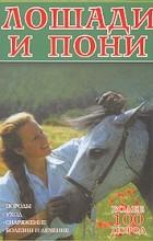 Вольфганг Крессе - Лошади и пони