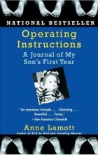 Anne Lamott - Operating Instructions: A Journal of My Son's First Year