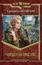 Шумская Елизавета - Чародеи на практике