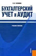 Е. В. Галкина - Бухгалтерский учет и аудит