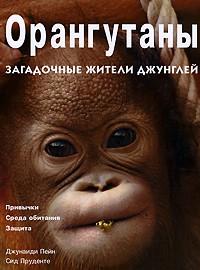 - Орангутаны. Загадочные жители джунглей