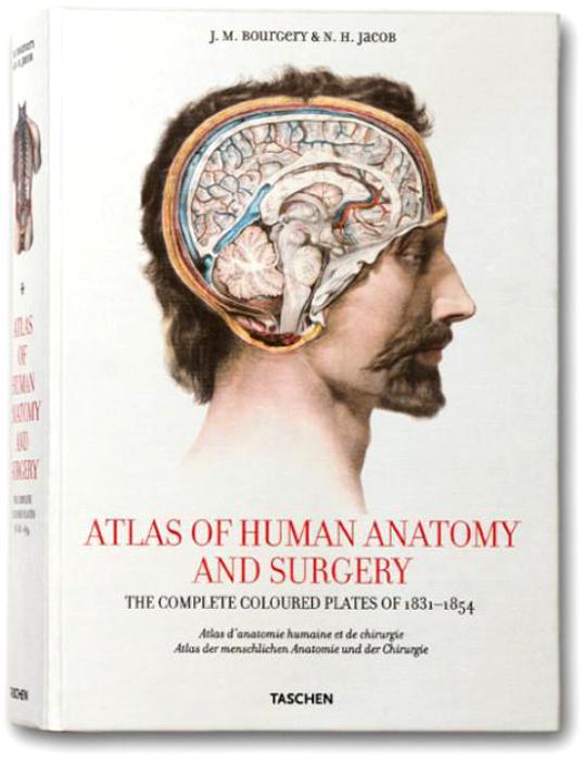 Atlas Of Human Anatomy Syrgery
