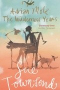 Sue Townsend - Adrian Mole: The Wilderness Years
