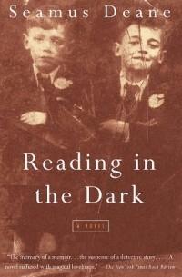 politics in reading in the dark by seamus deane