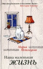 Мария Метлицкая - Наша маленькая жизнь
