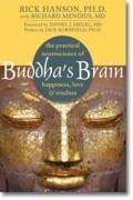 Rich Hanson - Buddha's Brain