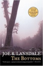 Joe R. Lansdale - The Bottoms