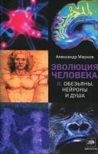 Александр Марков - Эволюция человека. В 2 книгах. Книга 2. Обезьяны, нейроны и душа
