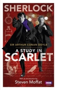 Epub scarlet a in study