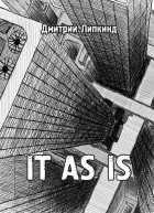 Дмитрий Липкинд - IT AS IS