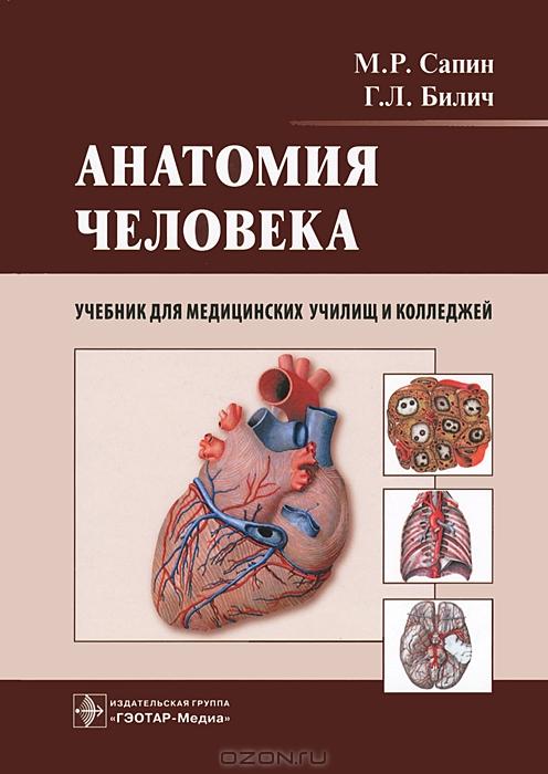 Скачать бесплатно учебник анатомия человека автор сапин и билич