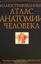 Питер Абрахамс - Иллюстрированный атлас анатомии человека
