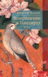 Андрей Волос - Возвращение в Панджруд