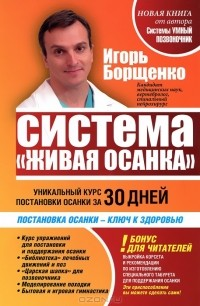 Игорь Борщенко - Система