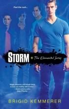 Brigid Kemmerer - Storm