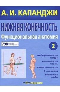 ebook statistik für