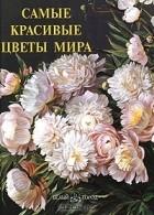 Анастасия Пантилеева - Самые красивые цветы мира