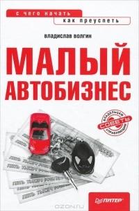 Владислав Волгин — Малый автобизнес. С чего начать, как преуспеть