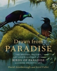 - Drawn from Paradise: The Natural History, Art and Discovery of the Birds of Paradise with Rare Archival Art