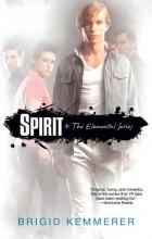 Brigid Kemmerer - Spirit