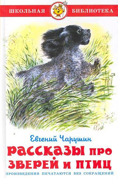 картинки чарушин рассказы