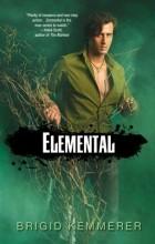 Brigid Kemmerer - Elemental