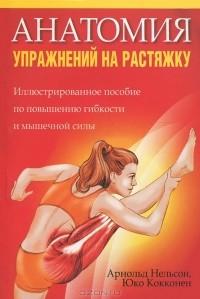 - Анатомия упражнений на растяжку