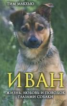 Тим Макхью - Иван. Жизнь, любовь и поводок глазами собаки
