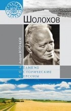 Андрей Воронцов - Шолохов