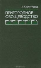 Яков Пантиелев - Пригородное овощеводство