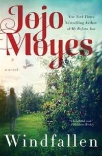 Jojo Moyes - Windfallen