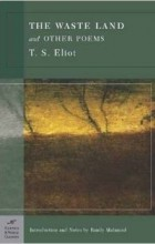 stanza analyses t s eliots the waste Hollow men ts eliot analysis do not waste your time has always only existed as an illusion in man's mind in the last stanza, eliot takes on a much darker.