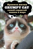 Н. Дубенюк - Grumpy Cat. Правила жизни самой сердитой кошки в мире