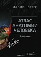 Фрэнк Неттер - Атлас анатомии человека