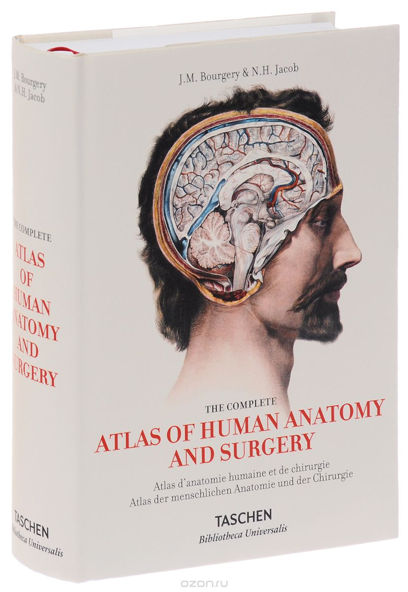 Atlas Of Human Anatomy And Surgery