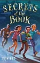 Erin Fry - Secrets of the Book