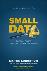 Martin Lindstrom - Small Data: The Tiny Clues That Uncover Huge Trends
