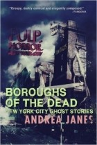 Andrea Janes - Boroughs of the Dead: New York City Ghost Stories