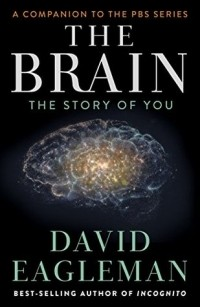 David Eagleman - The Brain: The Story of You